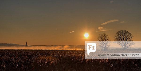Sonnenaufgang über dem Aachried  hinten Radolfzell am Bodensee  Hegau  Landkreis Konstanz  Baden-Württemberg  Deutschland  Europa