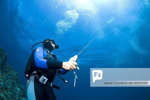 Scuba diver sending a lifebuoy to the water surface as an orientation for the boat crew
