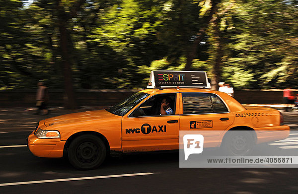 Blur effect of a moving taxi in Central Park  New York City  USA