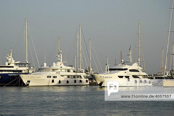 Weiße Luxus Motorboote im Jachthafen an der Passeig Maritim  Reial Club Nautic  Port de Palma  Mallorca  Balearen  Mittelmeer  Spanien  Europa