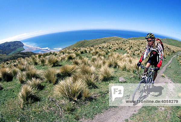 Mountainbiker  Cheviot  Ostküste  Südinsel  Neuseeland