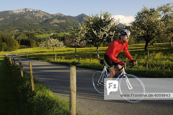 Rennradfahrer  Racebiker  Törwang  Chiemgau  Bayern  Deutschland  Europa
