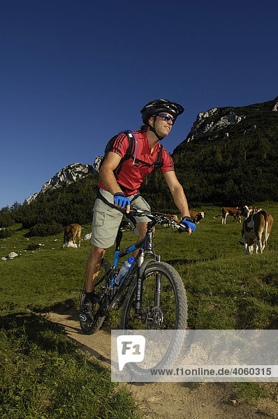 Mountain biker on Kampenwand  Chiemgau  Bavarian Pre-Alps  Bavaria  Germany  Europe