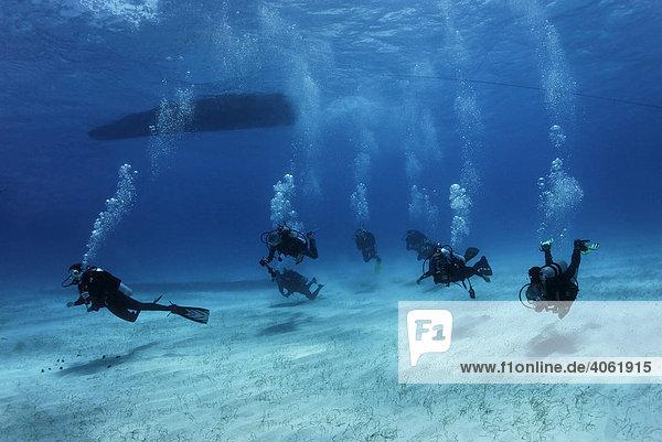 Tauchergruppe schwimmt vom Tauchboot über Sandgrund zum Korallenriff  Half Moon Caye  Lighthouse Reef  Turneffe Atoll  Belize  Zentralamerika  Karibik