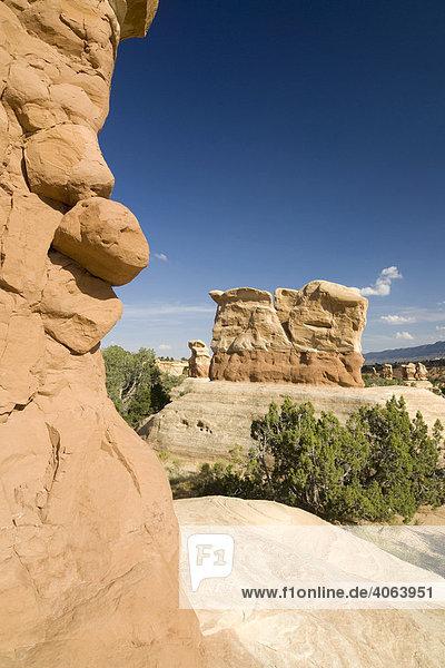 Sandsteinformationen im Devils Garden  Grand Staircase Escalante National Monument  Utah  USA  Nordamerika