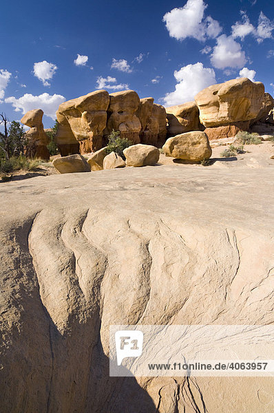 Sandsteinformationen im Devils Garden  Grand Staircase Escalante National Monument  Utah  USA  Nordamerika