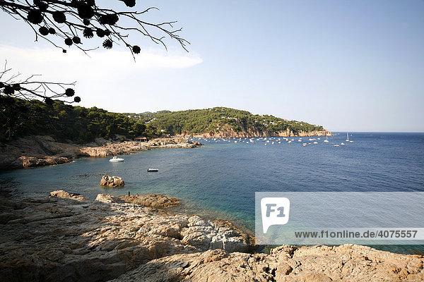 Blick in die Bucht von Tamariu  Costa Brava  Katalonien  Mittelmeer  Spanien  Europa