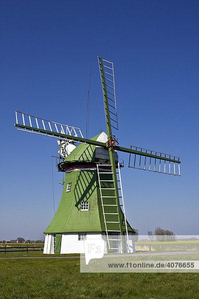 Historische Windmühle  Erdholländer mit Windrose  bei Wittmund  Ostfriesland  Niedersachsen  Deutschland  Europa