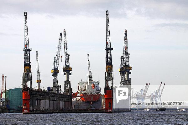 Schiff Crystal Topaz im Dock  Docks der Blohm & Voss Werft im Hamburger Hafen auf der Elbe  Hamburg  Deutschland  Europa