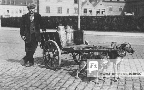 Historische Aufnahme  Hunde ziehen Milchwagen  ca. 1912