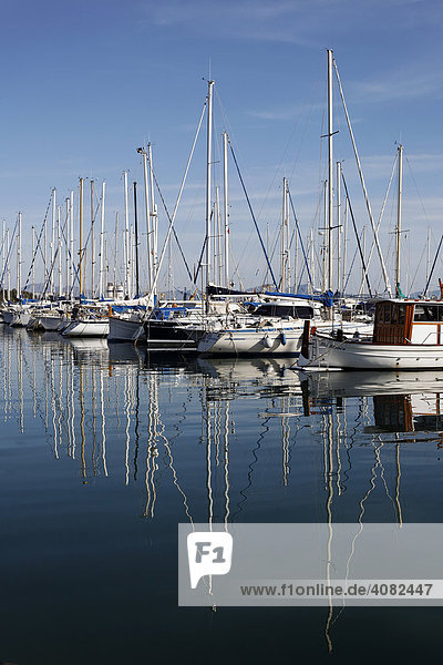 Boote im Hafen von Alcudia  Port Alcudia  Mallorca  Balearen  Spanien