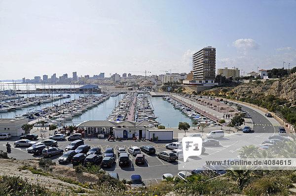 Yachthafen  El Campello  Alicante  Costa Blanca  Spanien