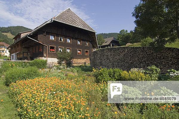 Hof bei Bernau Südschwarzwald Baden-Württemberg Deutschland Bauernhof