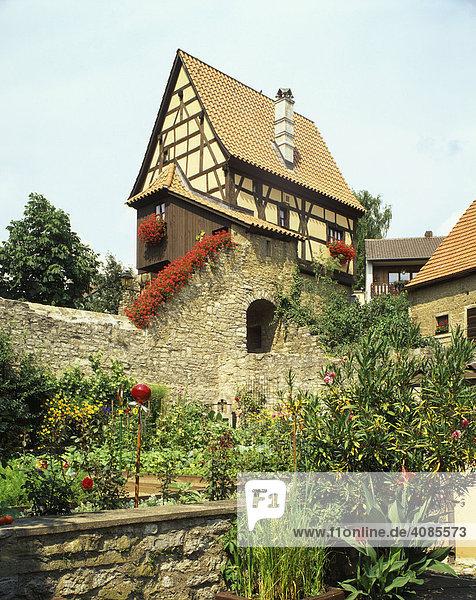 Frickenhausen am Main Unterfranken Bayern Deutschland