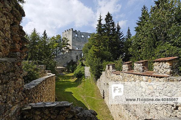 Ruine Althohenwang Langenwang im Mürztal Steiermark Österreich