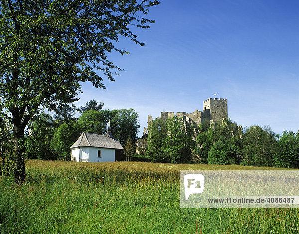 Ruine Weissenstein Niederbayern Bayern Deutschland