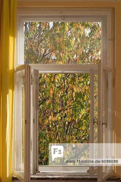 Offenes Fenster im Herbst