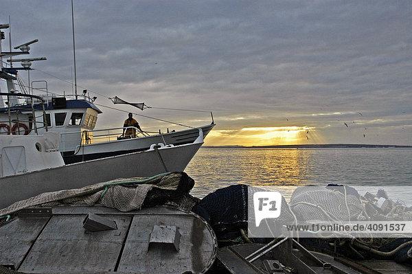 Fishing boats in the port of Santa Pola  Costa Blanca  Spain