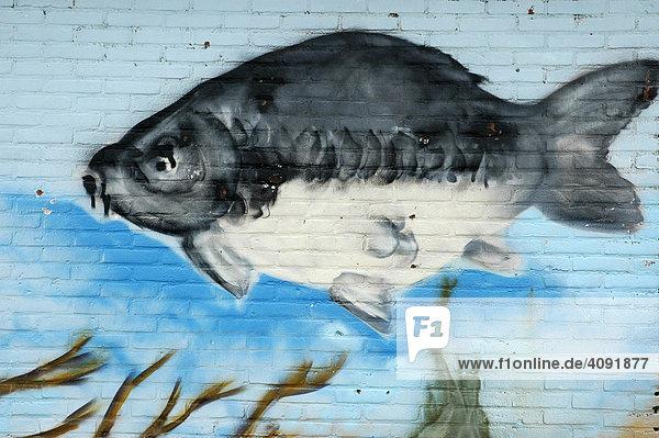Wandgemälde an Steinmauer  Fisch schwimmt im Meer  Katwijk aan Zee  Südholland  Holland  Niederlande