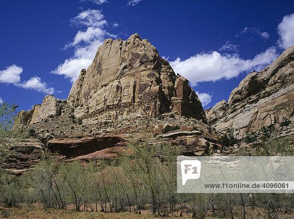 Navajo Dome  Capitol Reef NP  Utah  Amerika