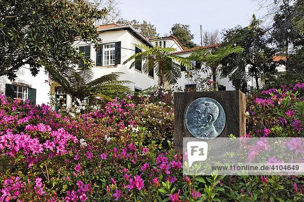 Denkmal von Carlos Azevedos de Meneses inmitten von Rhododendron im botanischer Garten (Jardim Botanico)  Funchal  Madeira  Portugal