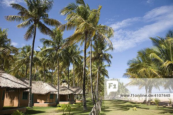 Hütten und Palmen  Playa Pui Puy  Rio Caribe  Sucre  Karibik  Venezuela  Südamerika