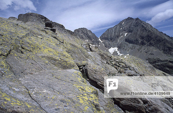 Felsbrocken im Gradental  Nationalpark Hohe Tauern  Kärnten  Österreich
