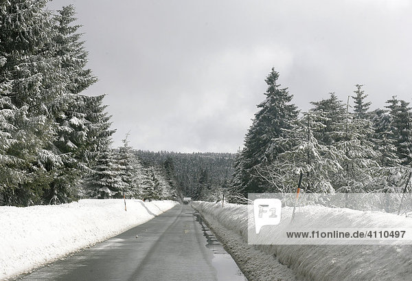 Empty lane in the forest on the wet road through the Erzgebirge in winter  Erz Ore Mountains  Saxony  Germany