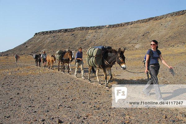 Wanderer mit Mulis  Fish-River-Canyon  Namibia