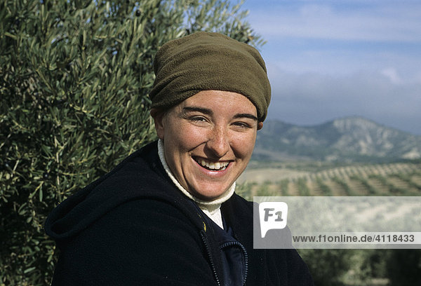 Worker at the olive harvest  Jaen province  Andalusia  Spain  Europe