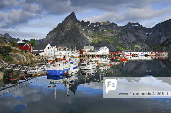 Fishing harbour  Reine  Moskenes  Lofoten  Norway  Scandinavia