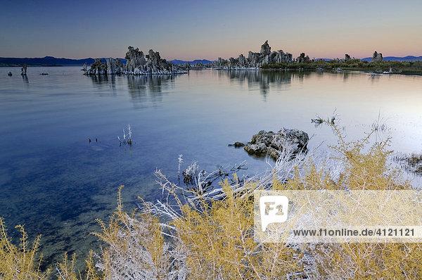 Bizarre Felsstrukturen aus Tuffstein  salzüberzogene Büsche und Pflanzen  alkalischer Salzsee  Monolake  Lee Vining  Kalifornien  USA Nordamerika