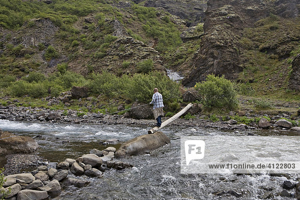 Simple bridge over a stream on the path to Glymur Waterfall  Iceland's highest waterfalls  Iceland  Atlantic Ocean