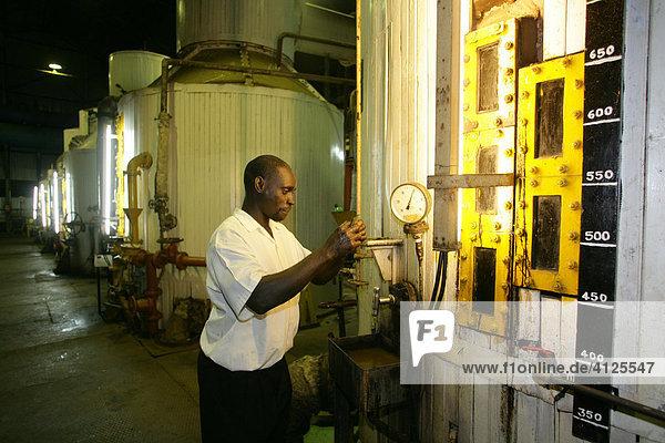 Worker checking syrup  production of Demerara sugar made from sugar cane  Demerara Province  Guyana  South America