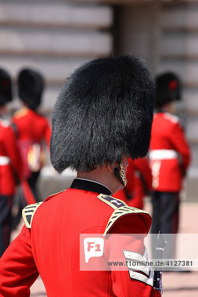 Royal Guard vor dem Buckingham Palace  London  England  Großbritannien  Europa