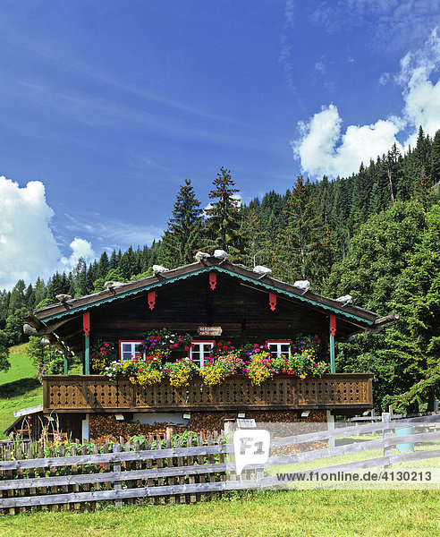 Holzhaus  Chalet  Balkon  Blumenkasten  Waldrand  Steiermark  Österreich