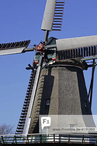 Alte holländische Windmühle in Oudeschild  Texel  Holland  Niederlande  Europa