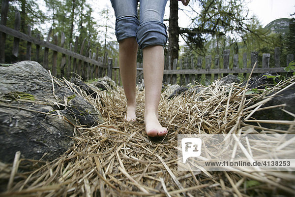AUT  Oesterreich  Fulpmes  Stubaital: Alpen- Wellness. Erlebnisweg bei der Schlickeralm. Im Wald  am Waxeck  koennen Wanderer einen Barfuss Wanderweg ausprobieren.
