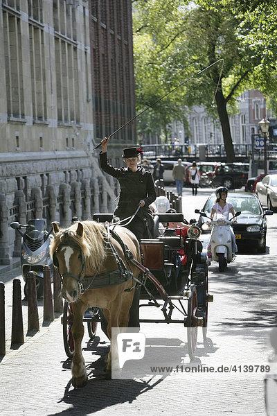 Pferdekutsche fuer Stadtrundfahrten  Amsterdam  Niederlande