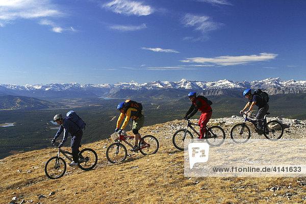 Bikers on the Coliseum Mountain  Rocky Mountains  Alberta  Canada