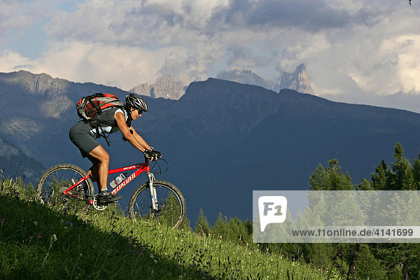Female mountain biker on the Karer pass with Pala group in the background  Dolomites  Italy