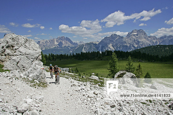 Mountainbike-Fahrerinnen an der Croda da Lago  mit Cristallo- und Sorapis-Massiv  Dolomiten  Italien