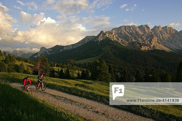 Mountainbike-Fahrerinnen am Karerpass  Latemar im Hintergrund  Dolomiten  Italien