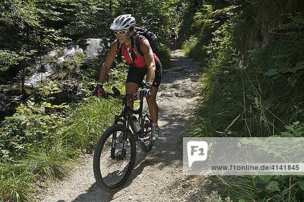 Mountainbikerin auf einem Trail neben einem Bach  Samerberg  Bayern  Deutschland