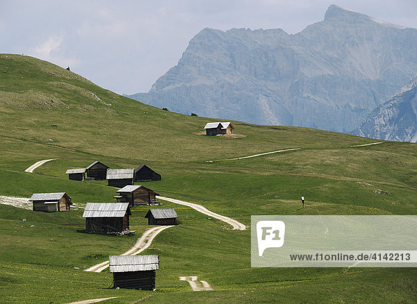 Higland pasture in the Dolomites  South Tyrol  Italy