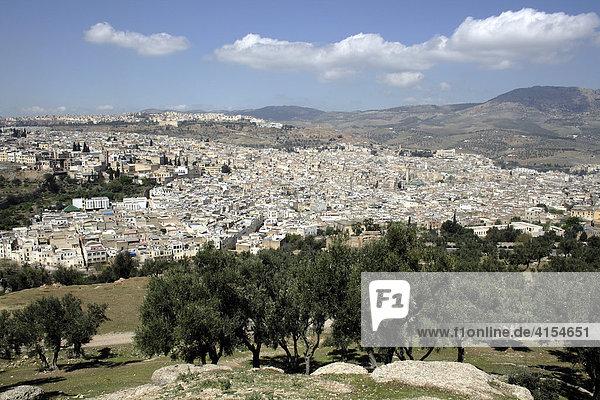 Stadtansicht der Altstadt  Königsstadt Fes  Marokko