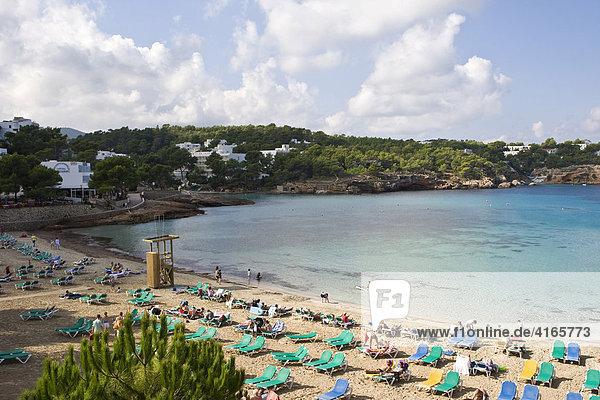 Strand bei Portinatx mit Sonnenliegen Ibiza  Balearen  Spanien