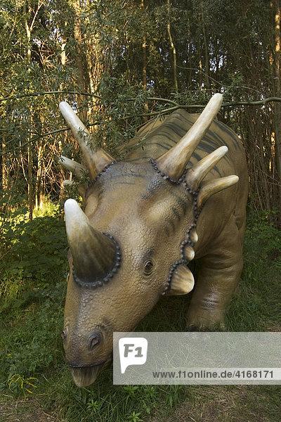 Horndinosaurier Styracosaurus - Dinopark Fürth - Mitelfranken