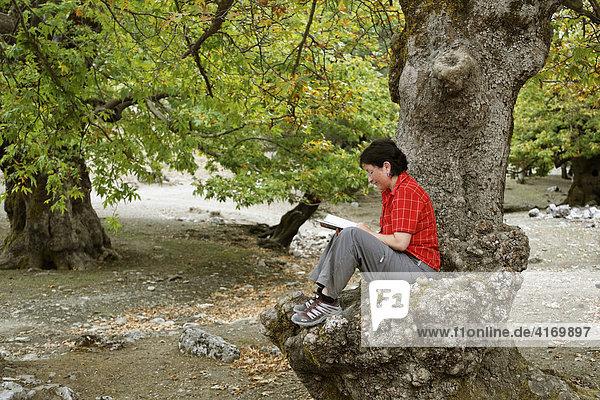 Frau liest Buch auf Stamm von Platane (Platanus x acerifolia)  Ida-Gebirge (Psiloritis)  Zentralkreta  Kreta  Griechenland