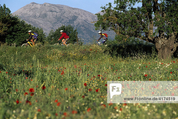 Mountainbiking  Lassithi Highlands  Crete  Greece